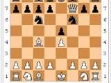 Consulenza aziendale personalizzata e scacchi , il matto del barbiere